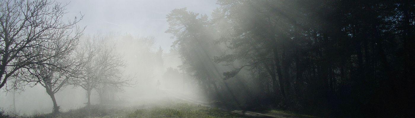 Domaine du Sablou